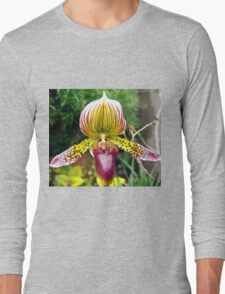 Purple and Yellow Orchid Long Sleeve T-Shirt