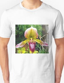 Purple and Yellow Orchid T-Shirt