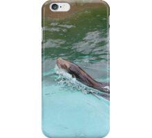Magestic Sea Lion iPhone Case/Skin