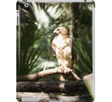Red Tail Hawk iPad Case/Skin