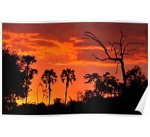 Okavango Sunset Poster