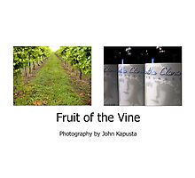 Long Island Winery Tour Photographic Print