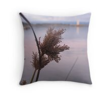 Grasses by the Lake at Sunset - Lake Burley Griffin, Canberra Throw Pillow