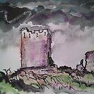 Dolwyddelan Castle, Betws-y-Coed, North Wales by Martin Williamson (©cobbybrook)
