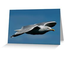 Last flight out Greeting Card