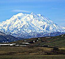 Denali ( Mt. McKinley) Alaska  by Don Siebel