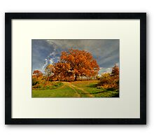 Autumn Picnic On The Hill Framed Print