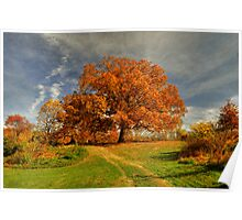 Autumn Picnic On The Hill Poster