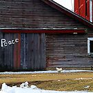 The Peace Barn by Brian Gaynor