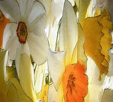 dafs in the spring by kathijones
