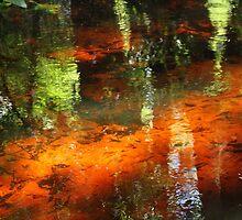 A florida stream by jozi1