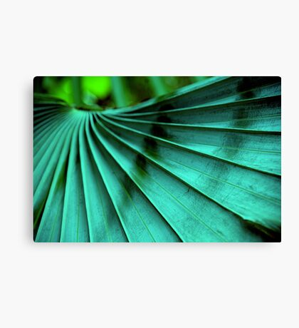 Tropical Wings Canvas Print