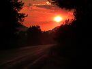 Sunset on the way to Halicarnassus by kutayk