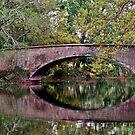 Audubon Park Bridge by RayDevlin