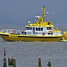 Pilot Boat by Bob Hortman