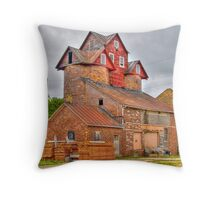 The Old Feed Mill Throw Pillow