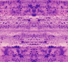 Purple Shower Mold by Alaina Colleen