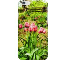 Dreamy Tulip Garden - Impressions Of Spring iPhone Case/Skin