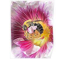 Pollen Pillow ! Poster