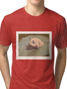 Happy Pig Wallowing in Mud Tri-blend T-Shirt
