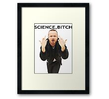 Jesse Pinkman - ''Science Bitch'' - Breaking Bad Framed Print