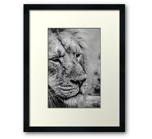Face Of Thought Framed Print