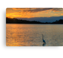 A Walk On The Wildside - Narrabeen Lakes, Sydney - The HDR Experience Canvas Print