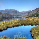 Ogwen's Pond by Darren Wilkes