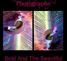 Bold And Beautiful by Leah Highland