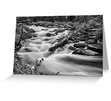 Flowing Rocky Mountain Stream in Black and White Greeting Card