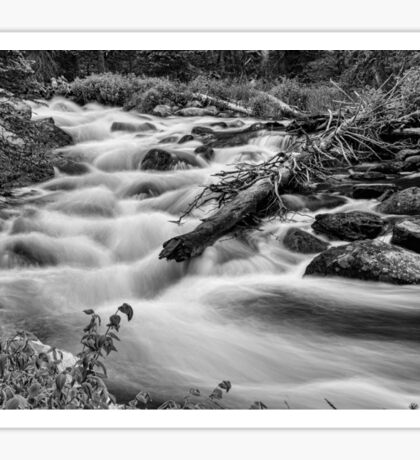 Flowing Rocky Mountain Stream in Black and White Sticker