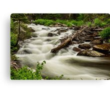 Flowing Rocky Mountain Stream Canvas Print