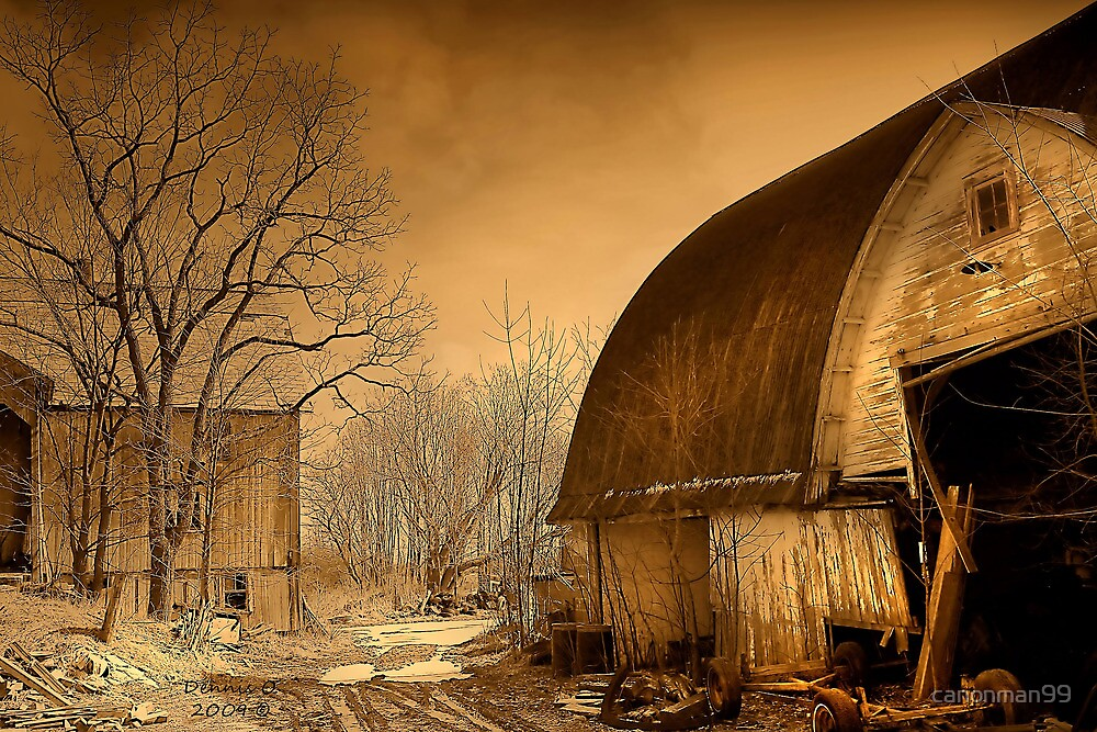 """"""" Sepia in Color """" by canonman99"""
