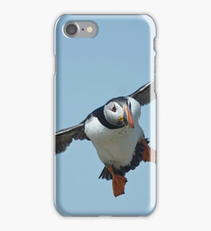 Puffin flying iPhone Case/Skin