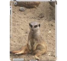 Meerly Sitting  iPad Case/Skin