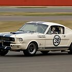 Shelby Mustang 350 GT (N &amp; H Whale) by Willie Jackson