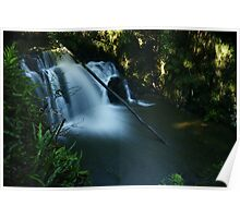 Lilydale Falls from above Poster