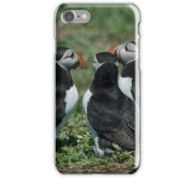Puffin water cooler moment iPhone Case/Skin