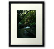 The Stream Between... Framed Print