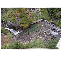 Narada Falls, in Mount Rainier National Park Poster