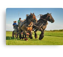A ride with horses and cart Canvas Print