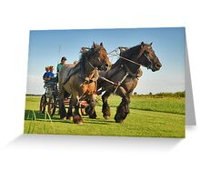 A ride with horses and cart Greeting Card