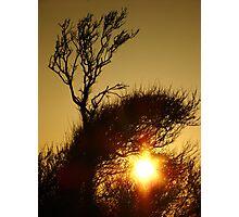 Sun Surfer Photographic Print