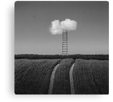 The Ladder Canvas Print