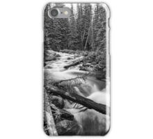 Pine Tree Forest Creek Portrait In Black and White iPhone Case/Skin