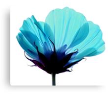 A Hue of Blue Canvas Print