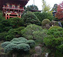 Japanese Tea Garden by Jason Teeple