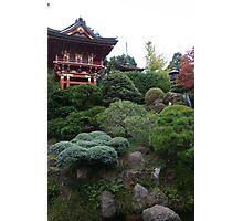 Japanese Tea Garden Photographic Print