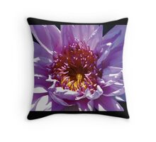 Color Contrast Close Up Water Lily Throw Pillow