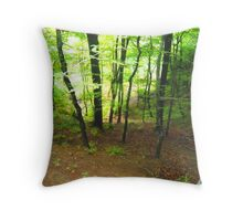 Paradise on earth Throw Pillow